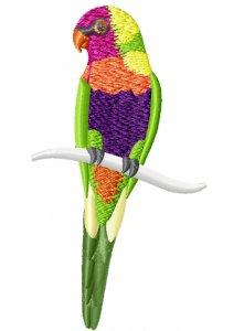 Новый бесплатный файл - Попугаи от Hatch Embroidery