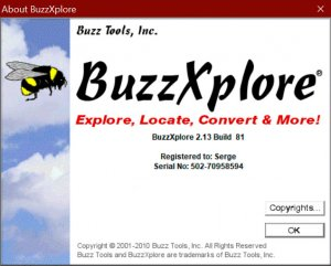Программа BuzzXplore 2