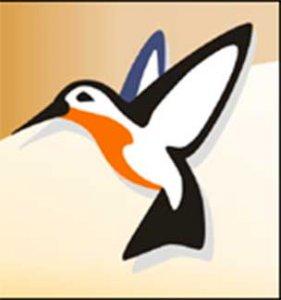 Птица 2017