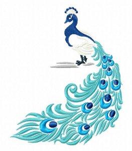 Подарок для подписчиков - Hatch Peacock